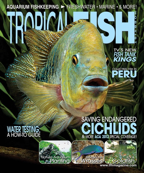 Tropical fish hobbyist magazine july 2012 676 on magpile for Tropical fish magazine